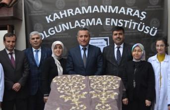 Osmanlı Hanedan Türbelerinin Puşide'lerini Olgunlaşma Enstitüsü Yeniliyor