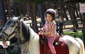 Kahramanmaraş'ta Mini Hayvanat Parkı