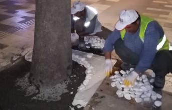 Ağaç Dipleri Dolamit Taşla Süsleniyor