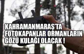 Kahramanmaraş'ta Fotokapanlar Ormanların Gözü Kulağı Olacak!