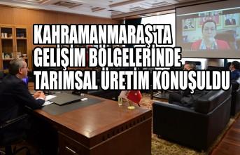 Kahramanmaraş'ta Gelişim Bölgelerinde Tarımsal Üretim Konuşuldu