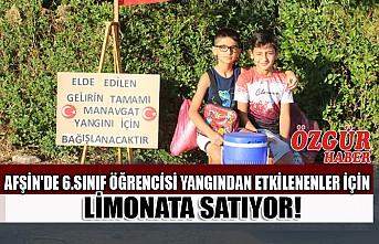 Afşin'de 6.Sınıf Öğrencisi Yangından Etkilenenler İçin Limonata Satıyor!