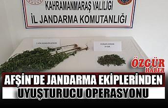 Afşin'de Jandarma Ekiplerinden Uyuşturucu Operasyonu