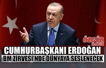 Cumhurbaşkanı Erdoğan BM Zirvesi'nde Dünyaya Seslenecek