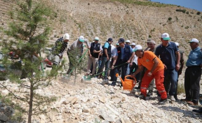 Kahramanmaraş'ta Erozyonla Mücadele Çalışmaları