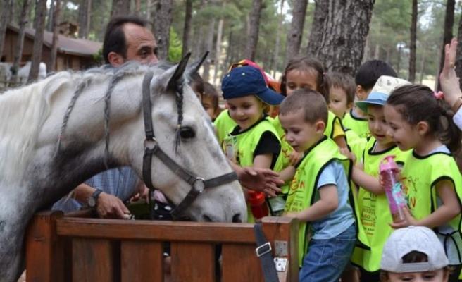 Arslanbey Doğal Yaşam Parkı'na Yoğun İlgi