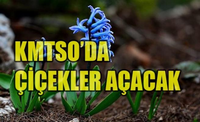"""KMTSO'dan """"Çiçek Yetiştiriciliği"""" Eğitimi"""