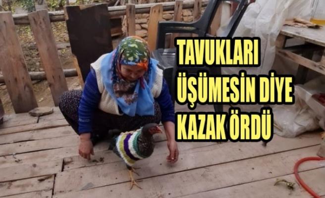 Tavukları Üşümesin Diye Kazak Ördü