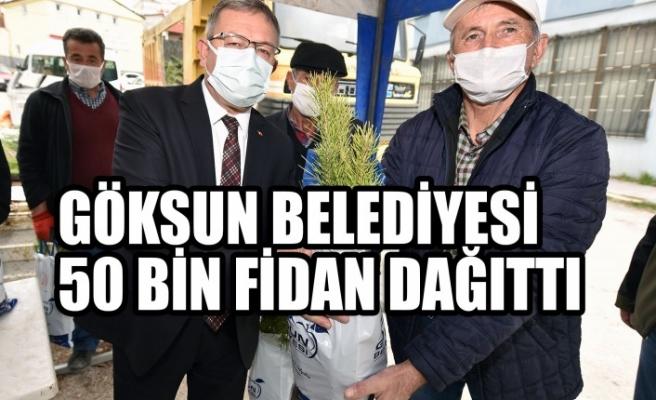 Göksun Belediyesi 50 Bin Fidan Dağıttı