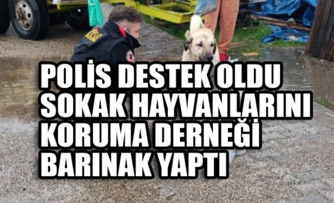 Polis Destek Oldu Sokak Hayvanlarını Koruma Derneği Barınak Yaptı