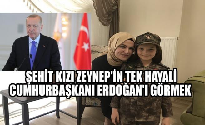 Şehit Kızı Zeynep'in Tek Hayali, Cumhurbaşkanı Erdoğan'ı Görmek