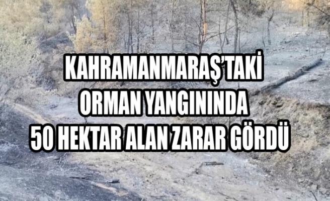 Kahramanmaraş'taki Orman Yangınında 50 Hektar Alan Zarar Gördü