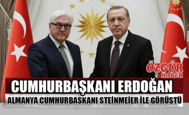 Cumhurbaşkanı Erdoğan Almanya Cumhurbaşkanı Steinmeier ile Görüştü