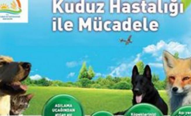Elbistan'da Kuduz Mücadelesinde Havadan Aşılama Projesi