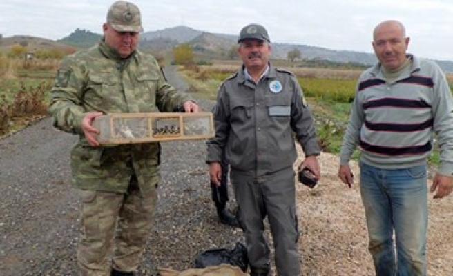 Kaçak Avcılara Jandarma Baskını