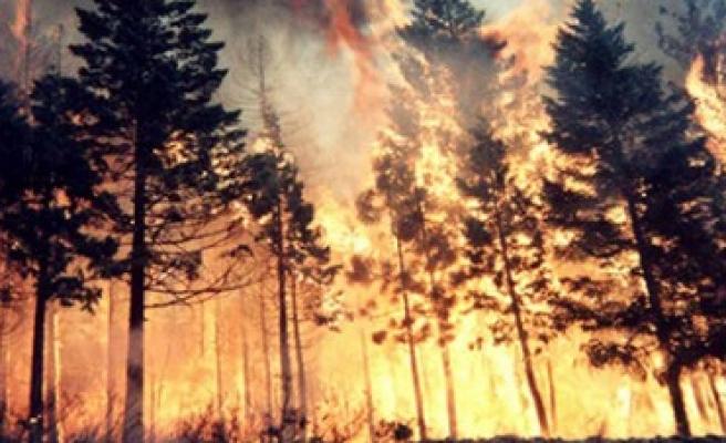TEMA, Yangın Riskine Dikkat Çekiyor