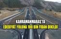 Edebiyat Yoluna 100 Bin Fidan Dikildi