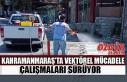 Kahramanmaraş'ta Vektörel Mücadele Çalışmaları...