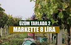 Üzüm Tarlada 2 Markette 8 Lira