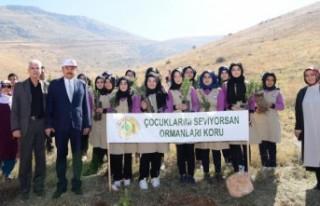 Başkan Erkoç: Sizin de Bir Dikili Ağacınız Olsun