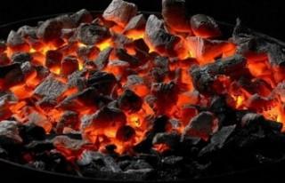 Pazarcık'ta Karbonmonoksit Zehirlenmesi: 2 Ölü