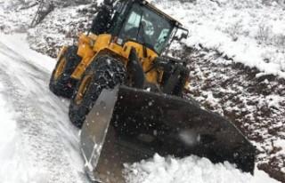 Onikişubat'ın Kar Mesaisi Vatandaşı Rahatlattı