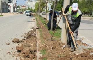 Büyükşehir'den Bahar Çalışmaları