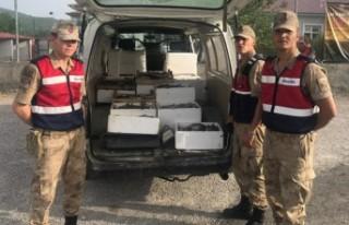 Andırın'da Kaçak Avlanmayla Mücadele