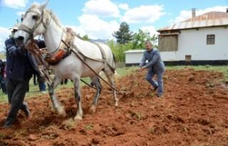 Başkan Aydın: Tarım Dünyanın Her Ülkesinde Stratejik...