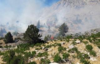 Kahramanmaraş'ta Dağlık Alanda Çıkan Yangın...