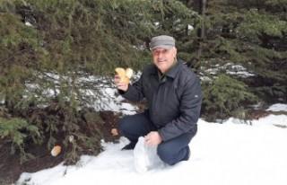 Bayat Ekmekleri Toplayıp Yaban Hayvanlarına Bırakıyor