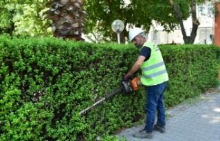 Dulkadiroğlu'nda Park Ve Bahçelerin Bakımı Yapılıyor
