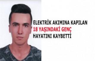 Kahramanmaraş'ta Elektrik Akımına Kapılan...