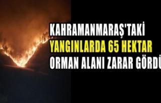 Kahramanmaraş'taki Yangınlarda 65 Hektar Orman...