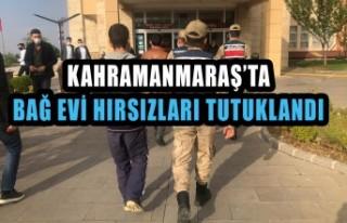 Bağ Evi hırsızları tutuklandı