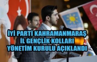 İYİ Parti Gençlik Kolları Yönetim Kurulu Açıklandı
