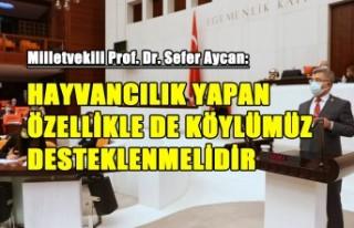 Aycan, Kahramanmaraş'ta Tarım ve Hayvancılık...
