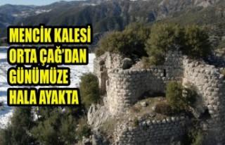 Mencik Kalesi Orta Çağ'dan Günümüze Hala Ayakta