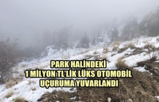 Park Halindeki 1 Milyon TL'lik Lüks Otomobil Uçuruma...