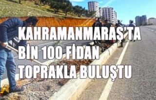 Kahramanmaraş'ta Bin 100 Fidan Toprakla Buluştu