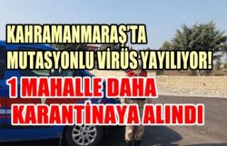 Kahramanmaraş'ta Mutasyonlu Virüs Yayılıyor
