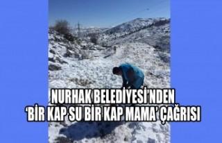 Nurhak Belediyesi'nden 'Bir Kap Su Bir Kap Mama'...