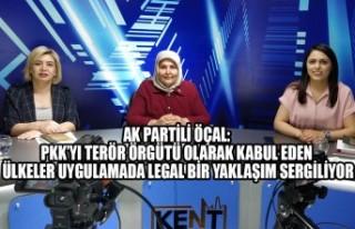 Ak Partili Öçal: PKK'yı Terör Örgütü Olarak...