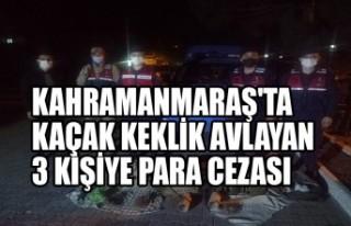 Kahramanmaraş'ta Kaçak Keklik Avlayan 3 Kişiye...