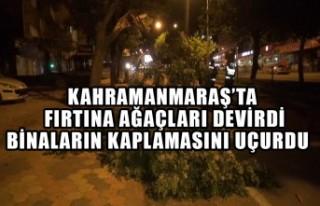 Kahramanmaraş'ta Fırtına Ağaçları Devirdi...