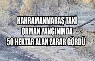 Kahramanmaraş'taki Orman Yangınında 50 Hektar...