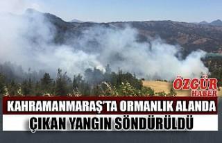 Kahramanmaraş'ta Ormanlık Alanda Çıkan Yangın...