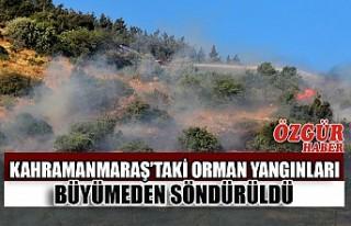 Kahramanmaraş'taki Orman Yangınları Büyümeden...