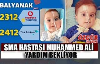 SMA Hastası Muhammed Ali Yardım Bekliyor
