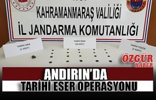 Andırın'da Tarihi Eser Operasyonu